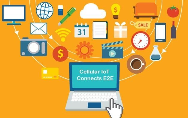 Cellular IoT evolution and segments