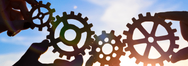 Usage Profile Series: The Information Processing Usage Profile